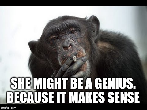SHE MIGHT BE A GENIUS. BECAUSE IT MAKES SENSE | made w/ Imgflip meme maker
