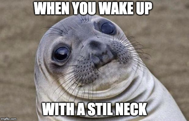 Awkward Moment Sealion Meme | WHEN YOU WAKE UP WITH A STIL NECK | image tagged in memes,awkward moment sealion | made w/ Imgflip meme maker