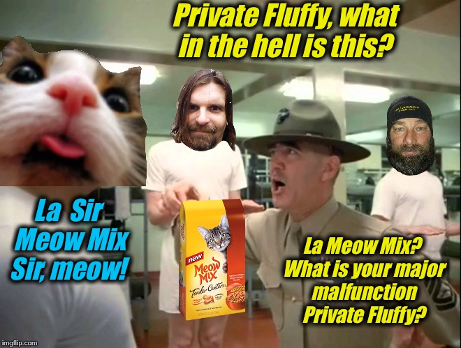 God Bless Ermey 1944-2018 | Private Fluffy, what in the hell is this? La  Sir Meow Mix Sir, meow! La Meow Mix? What is your major malfunction Private Fluffy? | image tagged in r lee ermey  private fluffy,memes,evilmandoevil,dashhopes,fluffy,funny | made w/ Imgflip meme maker