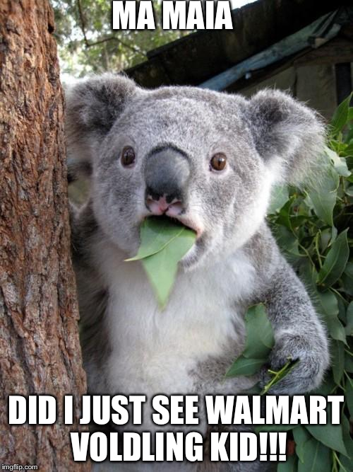Surprised Koala Meme | MA MAIA DID I JUST SEE WALMART VOLDLING KID!!! | image tagged in memes,surprised koala | made w/ Imgflip meme maker