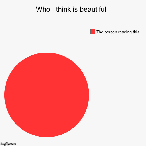Who I think is beautiful  | The person reading this | image tagged in funny,pie charts | made w/ Imgflip pie chart maker