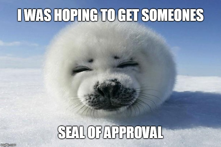 I WAS HOPING TO GET SOMEONES SEAL OF APPROVAL | made w/ Imgflip meme maker