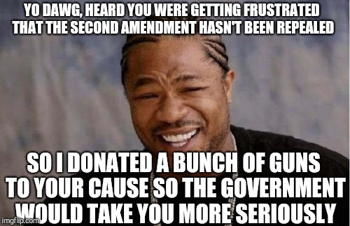 Literally Me If I Were A Billionaire | YO DAWG, HEARD YOU WERE GETTING FRUSTRATED THAT THE SECOND AMENDMENT HASN'T BEEN REPEALED SO I DONATED A BUNCH OF GUNS TO YOUR CAUSE SO THE  | image tagged in memes,yo dawg heard you,guns,2nd amendment,politics,gun control | made w/ Imgflip meme maker