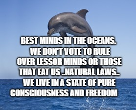 BEST MINDS IN THE OCEANS.  WE DON'T VOTE TO RULE OVER LESSOR MINDS OR THOSE THAT EAT US ..NATURAL LAWS.. WE LIVE IN A STATE OF PURE CONSCIOU | image tagged in purpose in life | made w/ Imgflip meme maker