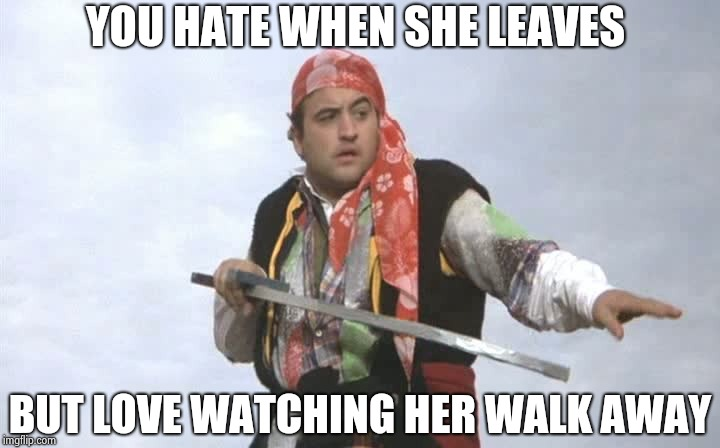 Pirate Belushi | YOU HATE WHEN SHE LEAVES BUT LOVE WATCHING HER WALK AWAY | image tagged in pirate belushi | made w/ Imgflip meme maker