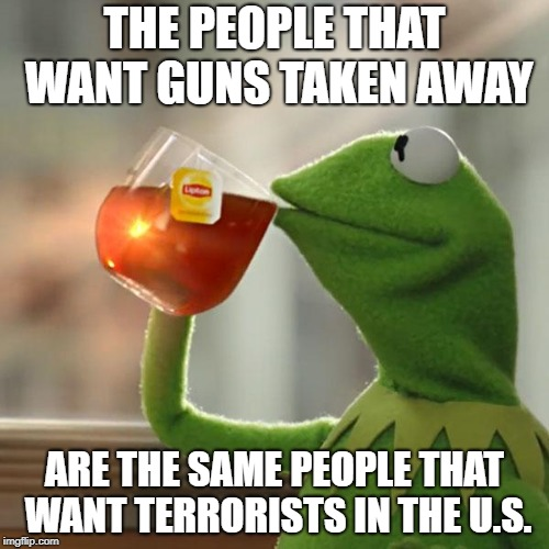 But Thats None Of My Business Meme | THE PEOPLE THAT WANT GUNS TAKEN AWAY ARE THE SAME PEOPLE THAT WANT TERRORISTS IN THE U.S. | image tagged in memes,but thats none of my business,kermit the frog | made w/ Imgflip meme maker