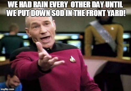 Picard Wtf Meme | WE HAD RAIN EVERY  OTHER DAY UNTIL WE PUT DOWN SOD IN THE FRONT YARD! | image tagged in memes,picard wtf | made w/ Imgflip meme maker