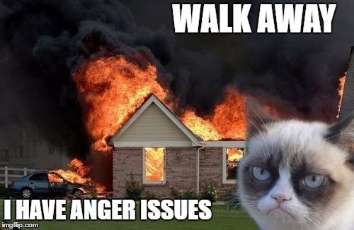 Burn Kitty | WALK AWAY I HAVE ANGER ISSUES | image tagged in memes,burn kitty,grumpy cat,random | made w/ Imgflip meme maker