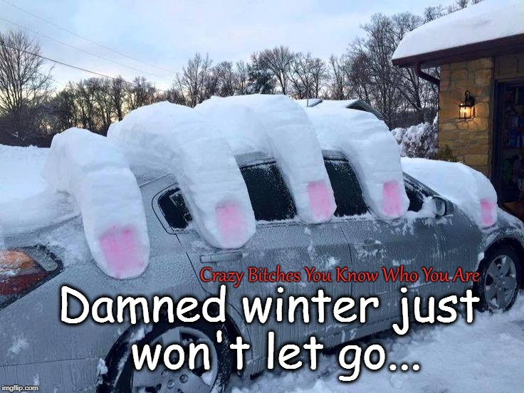 Damned winter just won't let go... Crazy B**ches You Know Who You Are | image tagged in winter,snow | made w/ Imgflip meme maker