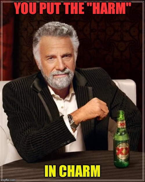"The Most Interesting Man In The World Meme | YOU PUT THE ""HARM"" IN CHARM 