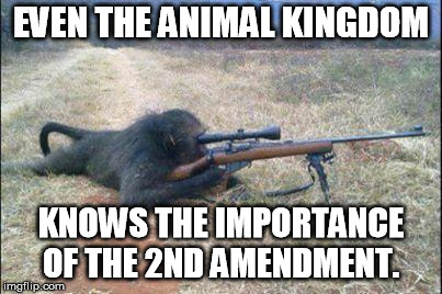 monkeys n guns | EVEN THE ANIMAL KINGDOM KNOWS THE IMPORTANCE OF THE 2ND AMENDMENT. | image tagged in monkeys n guns | made w/ Imgflip meme maker