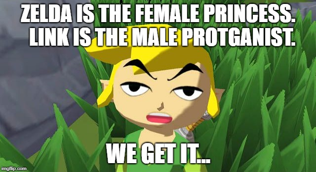 ZELDA IS THE FEMALE PRINCESS.  LINK IS THE MALE PROTGANIST. WE GET IT... | image tagged in gaming | made w/ Imgflip meme maker