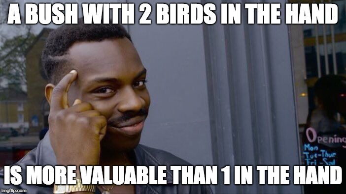 Gotta Think About It | A BUSH WITH 2 BIRDS IN THE HAND IS MORE VALUABLE THAN 1 IN THE HAND | image tagged in memes,roll safe think about it | made w/ Imgflip meme maker