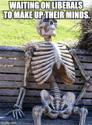 Waiting Skeleton Meme | WAITING ON LIBERALS TO MAKE UP THEIR MINDS. | image tagged in memes,waiting skeleton | made w/ Imgflip meme maker