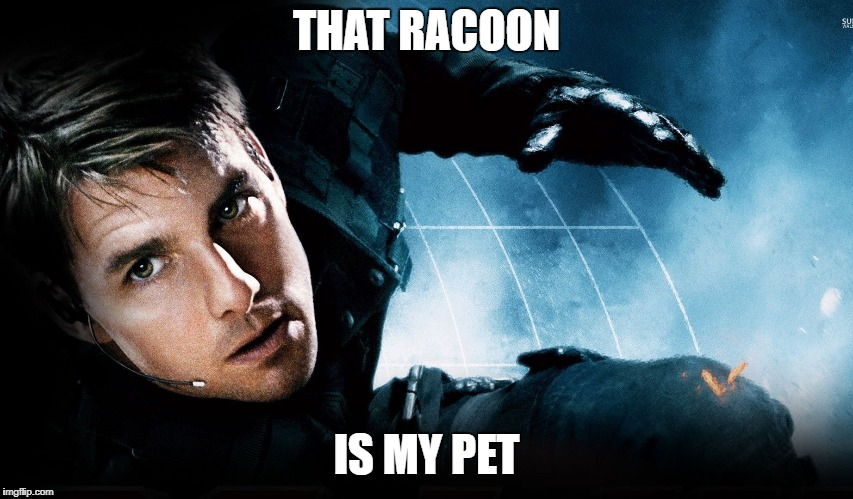 THAT RACOON IS MY PET | made w/ Imgflip meme maker