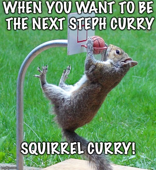 WHEN YOU WANT TO BE THE NEXT STEPH CURRY SQUIRREL CURRY! | image tagged in squirrel meme,squirrel curry meme,basketball meme,basketball squirrel meme,meme,animal meme | made w/ Imgflip meme maker