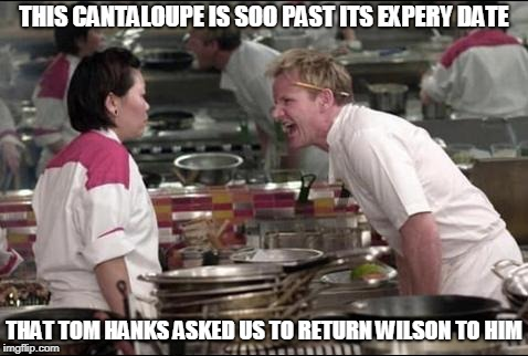 Angry Chef Gordon Ramsay Meme | THIS CANTALOUPE IS SOO PAST ITS EXPERY DATE THAT TOM HANKS ASKED US TO RETURN WILSON TO HIM | image tagged in memes,angry chef gordon ramsay | made w/ Imgflip meme maker