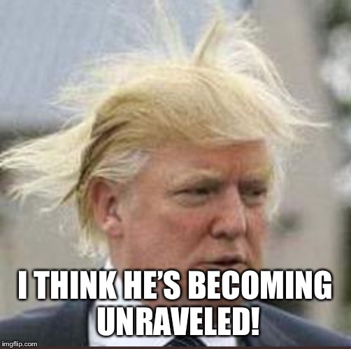 Trump unraveled  | I THINK HE'S BECOMING UNRAVELED! | image tagged in donald trump,trump lawyer,trump hannity,trump hair,michael cohen,stormy daniels | made w/ Imgflip meme maker