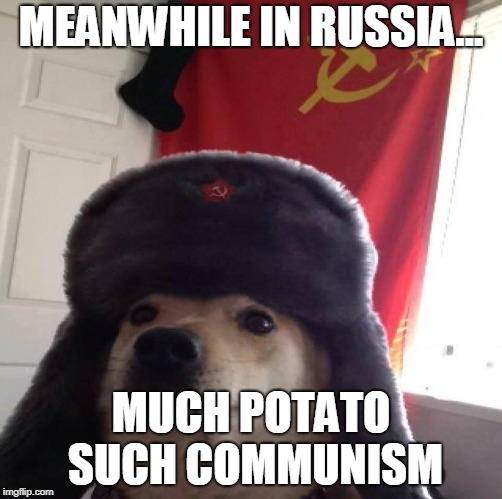 MEANWHILE IN RUSSIA... MUCH POTATO SUCH COMMUNISM | image tagged in doggo in soviet russia | made w/ Imgflip meme maker