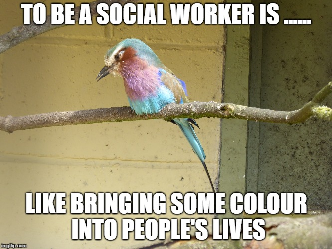TO BE A SOCIAL WORKER IS ...... LIKE BRINGING SOME COLOUR INTO PEOPLE'S LIVES | image tagged in memes | made w/ Imgflip meme maker