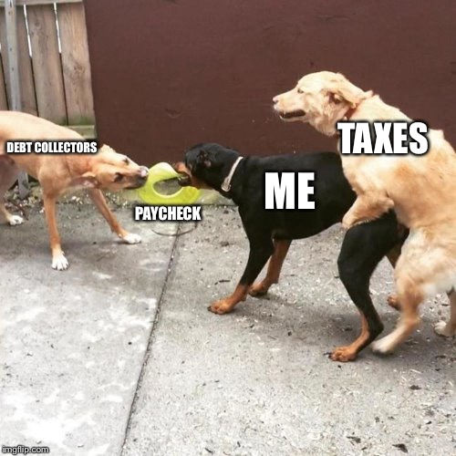 This Is My Life | DEBT COLLECTORS PAYCHECK ME TAXES | image tagged in this is my life | made w/ Imgflip meme maker