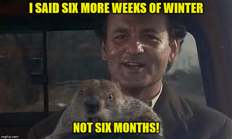 I SAID SIX MORE WEEKS OF WINTER NOT SIX MONTHS! | image tagged in groundhog | made w/ Imgflip meme maker