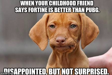 Sigh, fortnite, and friends... | WHEN YOUR CHILDHOOD FRIEND SAYS FORTINE IS BETTER THAN PUBG. DISAPPOINTED, BUT NOT SURPRISED. | image tagged in dissapointed puppy | made w/ Imgflip meme maker