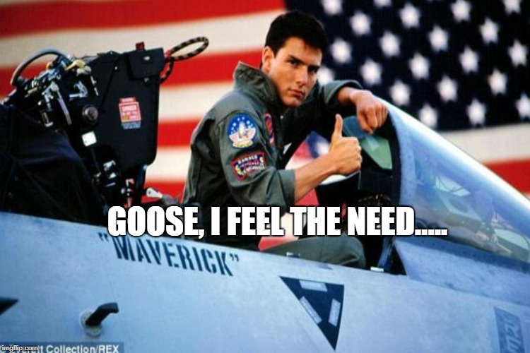 GOOSE, I FEEL THE NEED..... | made w/ Imgflip meme maker