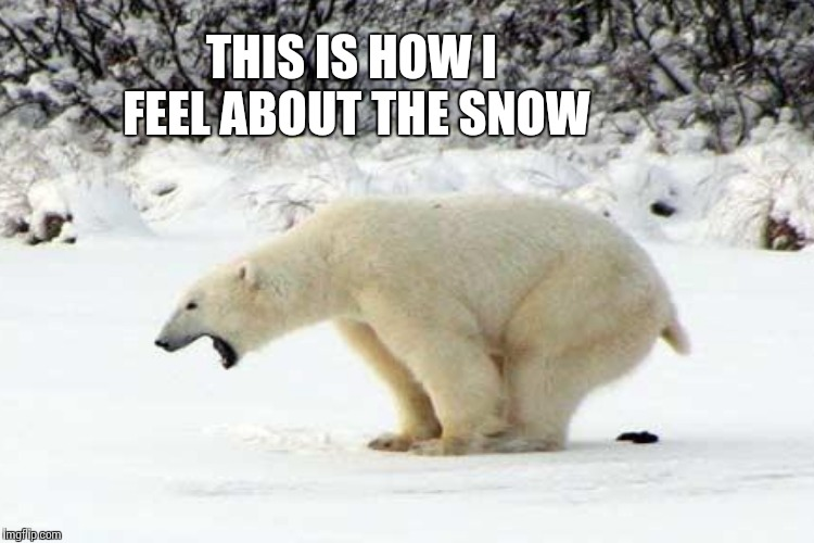 THIS IS HOW I FEEL ABOUT THE SNOW | made w/ Imgflip meme maker