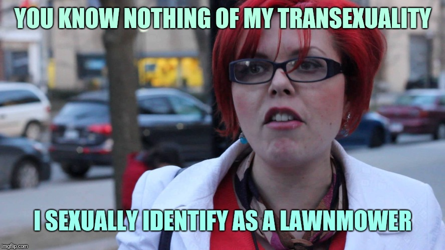 YOU KNOW NOTHING OF MY TRANSEXUALITY I SEXUALLY IDENTIFY AS A LAWNMOWER | image tagged in triggered feminist | made w/ Imgflip meme maker