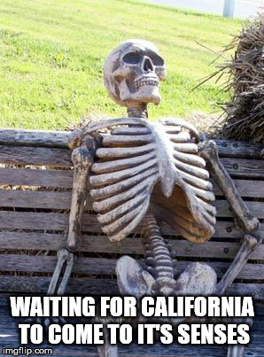 Waiting Skeleton Meme | WAITING FOR CALIFORNIA TO COME TO IT'S SENSES | image tagged in memes,waiting skeleton | made w/ Imgflip meme maker