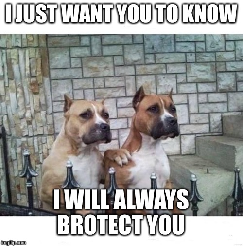 Don't Worry Bro | I JUST WANT YOU TO KNOW I WILL ALWAYS BROTECT YOU | image tagged in don't worry bro | made w/ Imgflip meme maker