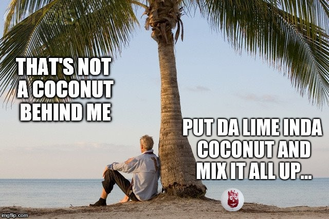 PUT DA LIME INDA COCONUT AND MIX IT ALL UP... | made w/ Imgflip meme maker