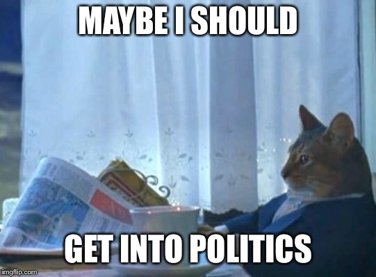 Cat newspaper | MAYBE I SHOULD GET INTO POLITICS | image tagged in cat newspaper | made w/ Imgflip meme maker