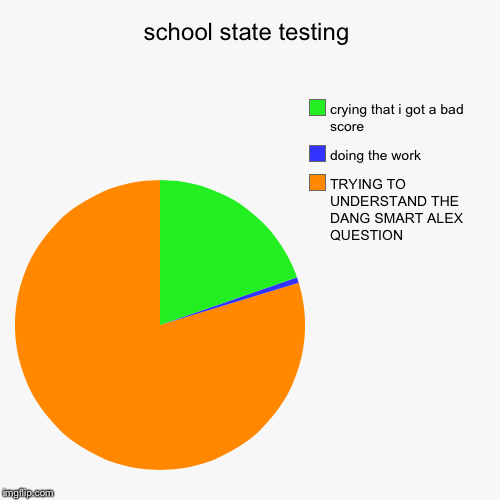 school state testing | TRYING TO UNDERSTAND THE DANG SMART ALEX QUESTION, doing the work, crying that i got a bad score | image tagged in funny,pie charts | made w/ Imgflip pie chart maker
