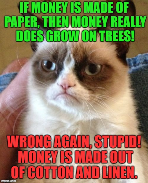 $$$ Grumpy Cat $$$ | IF MONEY IS MADE OF PAPER, THEN MONEY REALLY DOES GROW ON TREES! WRONG AGAIN, STUPID! MONEY IS MADE OUT OF COTTON AND LINEN. | image tagged in memes,grumpy cat,bad luck,money,first world problems,funny | made w/ Imgflip meme maker