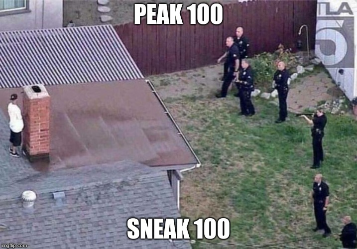 Fortnite meme | PEAK 100 SNEAK 100 | image tagged in fortnite meme | made w/ Imgflip meme maker