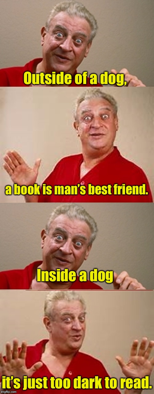 Bad Pun Rodney Dangerfield | Outside of a dog, it's just too dark to read. a book is man's best friend. Inside a dog | image tagged in bad pun rodney dangerfield,memes,dog,book,read | made w/ Imgflip meme maker