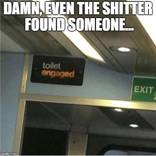 DAMN, EVEN THE SHITTER FOUND SOMEONE... | image tagged in toilet,engaged | made w/ Imgflip meme maker