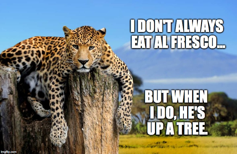 New Template! Most Interesting Leopard In The World --Have Fun With It! | I DON'T ALWAYS EAT AL FRESCO... BUT WHEN I DO, HE'S UP A TREE. | image tagged in most interesting leopard in the world | made w/ Imgflip meme maker