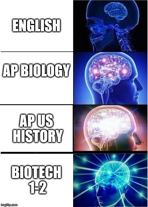 Course Difficulty | ENGLISH AP BIOLOGY AP US HISTORY BIOTECH 1-2 | image tagged in memes,expanding brain | made w/ Imgflip meme maker
