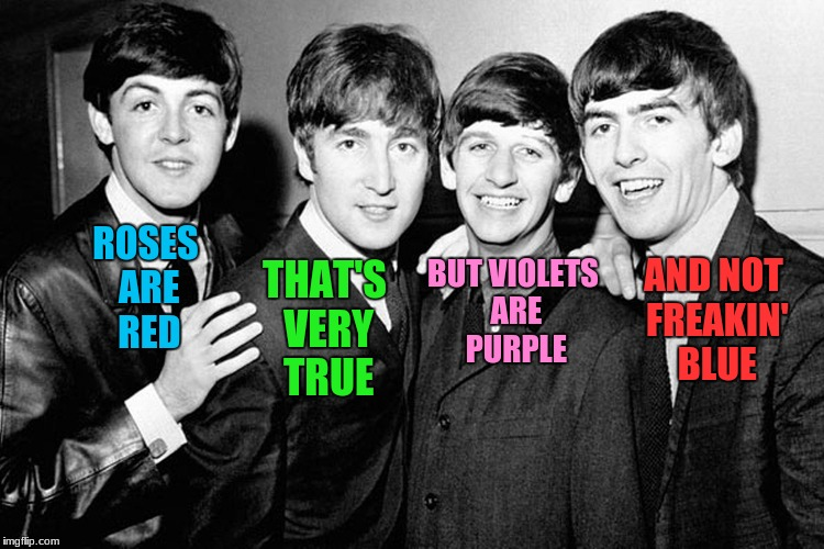 Have you ever seen a blue violet? | ROSES ARE RED THAT'S VERY TRUE BUT VIOLETS ARE PURPLE AND NOT FREAKIN' BLUE | image tagged in the beatles,roses are red,roses are red violets are are blue | made w/ Imgflip meme maker