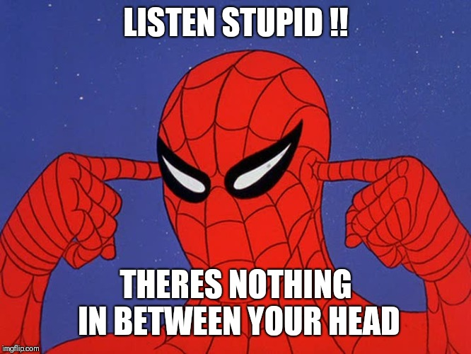 60s Spiderman | LISTEN STUPID !! THERES NOTHING IN BETWEEN YOUR HEAD | image tagged in 60s spiderman | made w/ Imgflip meme maker