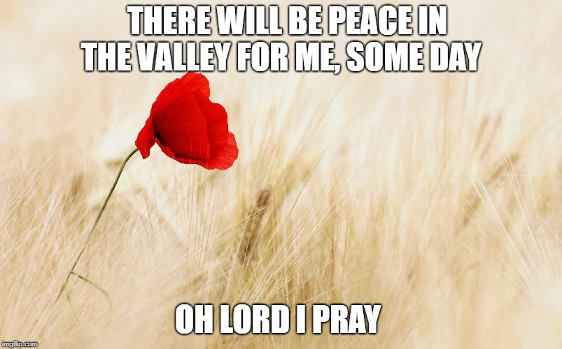 Peace In the Valley | THERE WILL BE PEACE IN THE VALLEY FOR ME, SOME DAY OH LORD I PRAY | image tagged in peace,flower,field | made w/ Imgflip meme maker