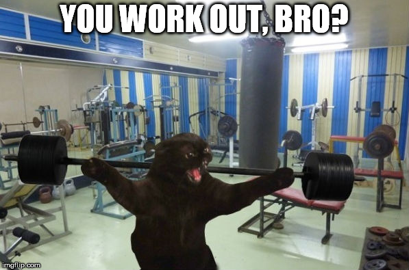 YOU WORK OUT, BRO? | made w/ Imgflip meme maker