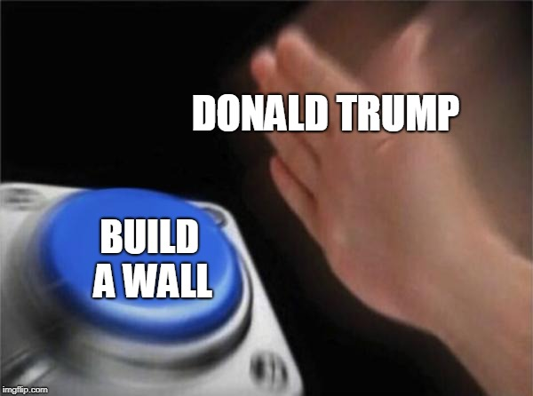 Donald Trump Build a Wall Button | DONALD TRUMP BUILD A WALL | image tagged in memes,blank nut button,trump,build a wall | made w/ Imgflip meme maker