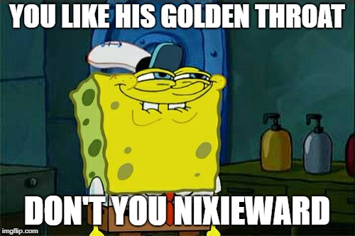 Dont You Squidward Meme | YOU LIKE HIS GOLDEN THROAT DON'T YOU NIXIEWARD | image tagged in memes,dont you squidward | made w/ Imgflip meme maker