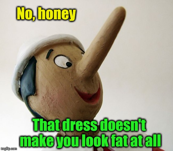 Once a male, always a male! LOL | No, honey That dress doesn't make you look fat at all | image tagged in pinnochio | made w/ Imgflip meme maker