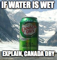 Explain that one wet waterers! | IF WATER IS WET EXPLAIN, CANADA DRY | image tagged in canada dry | made w/ Imgflip meme maker