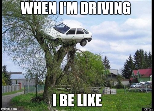 Secure Parking Meme | WHEN I'M DRIVING I BE LIKE | image tagged in memes,secure parking | made w/ Imgflip meme maker